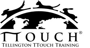 TTouch_Logo_jpg
